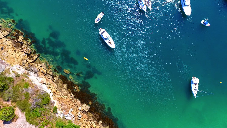 Spring Cove Sydney Harbour
